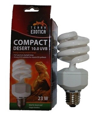 Compact-Lampe